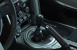 Picture for category Shift Knobs
